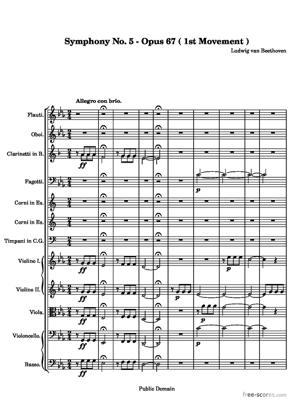 Sheet Music Symphony No. 5 (1st Movement)